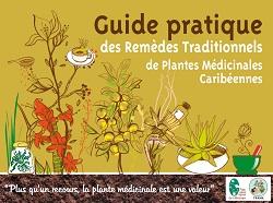 Guide pratique des remèdes traditionnels de plantes médicinales caribéennes